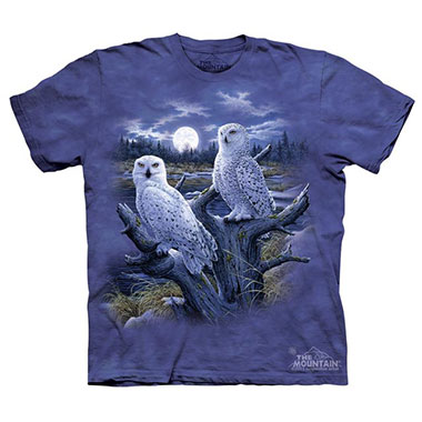 The Mountain - Snowy Owls