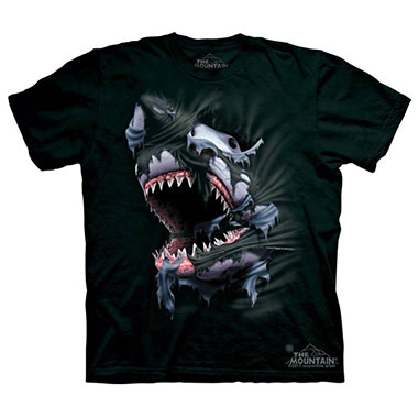 The Mountain - Breakthrough Shark