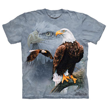 The Mountain - Eagle Collage