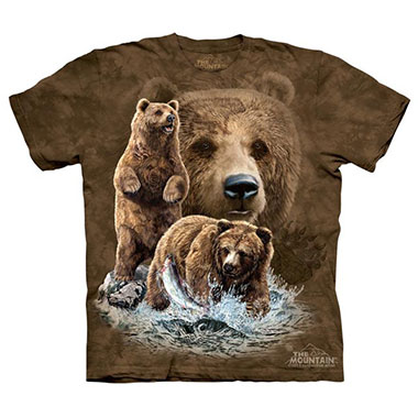 The Mountain - Find 10 Brown Bears