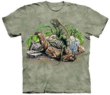 The Mountain - Find 10 Iguanas