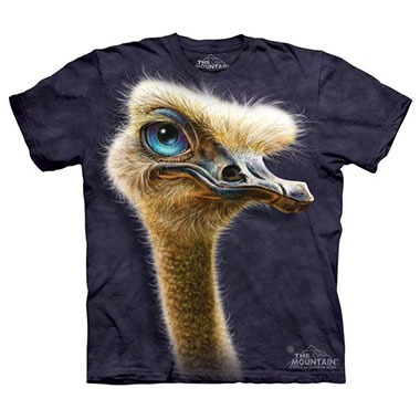 The Mountain - Ostrich Totem