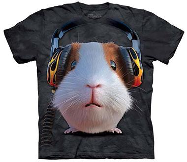 The Mountain - DJ Guinea Pig