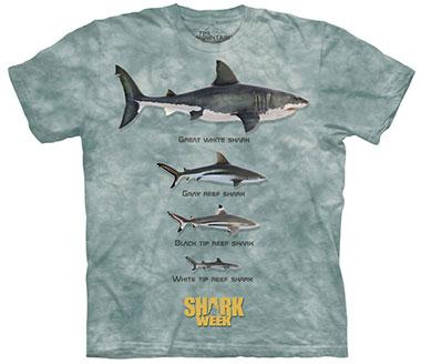 The Mountain - Shark Line Up T-Shirt