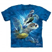 The Mountain - Find 9 Sea Turtles - Youth