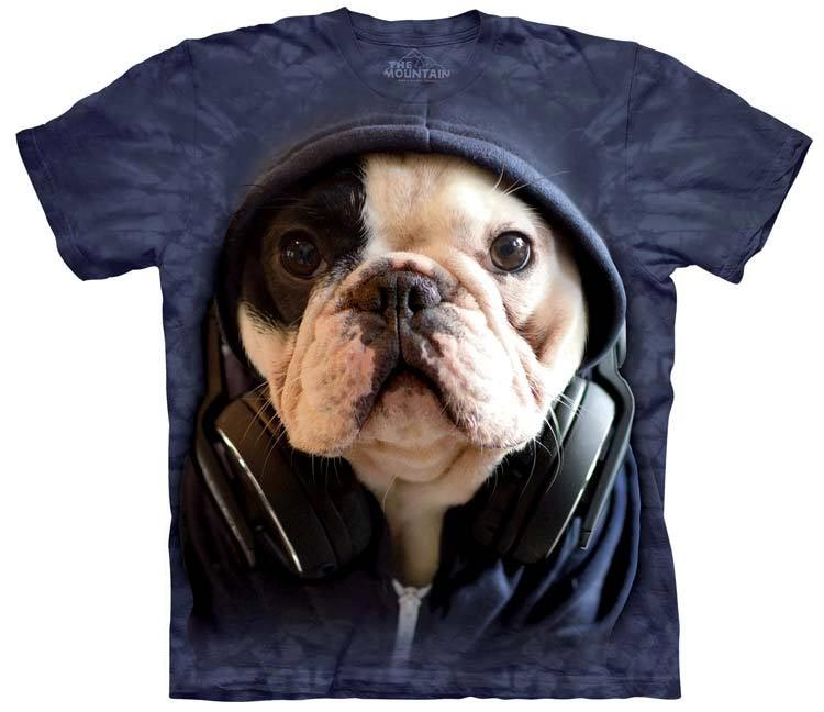 The Mountain - DJ Manny the Frenchie