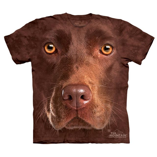 The Mountain - Chocolate Lab Face - Youth