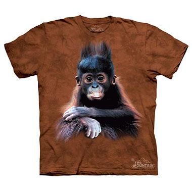 The Mountain - Orangutan Baby