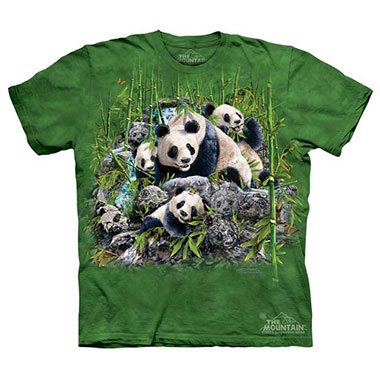 The Mountain - Find 13 Pandas