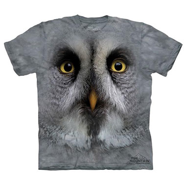 The Mountain - Great Grey Owl Face