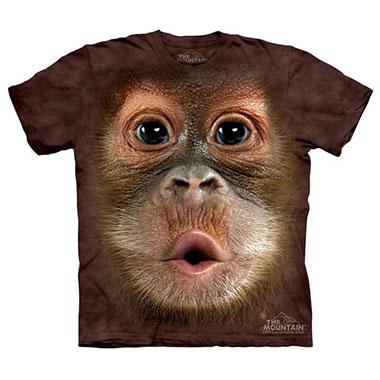 The Mountain - Big Face Baby Orangutan