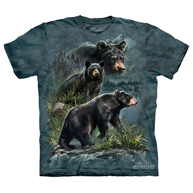 The Mountain - Three Black Bears