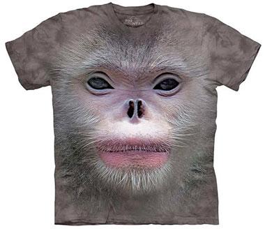 The Mountain - Big Face Snub Nose Monkey