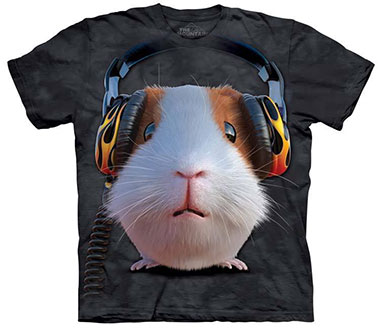 The Mountain - DJ Guinea Pig