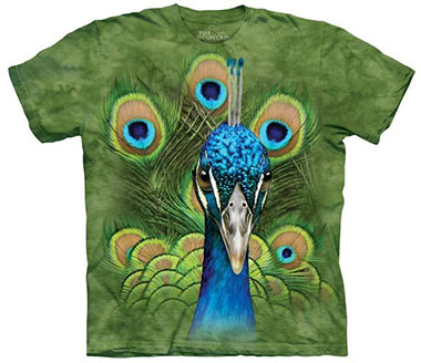 The Mountain - Vibrant Peacock