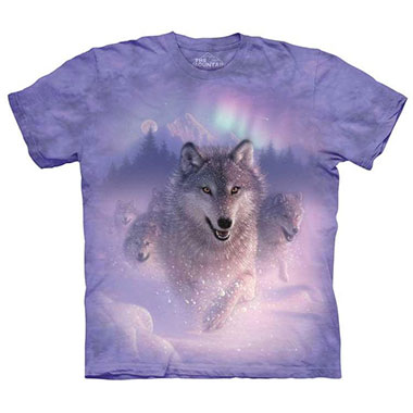 The Mountain - Northern Lights T-Shirt