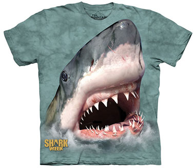 The Mountain - Sharktastic Green T-Shirt