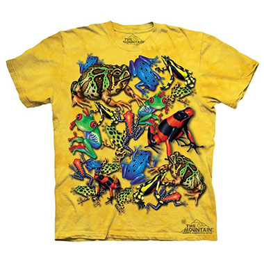 The Mountain - Frog Collage - Youth