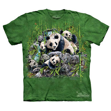 The Mountain - Find 13 Pandas - Youth