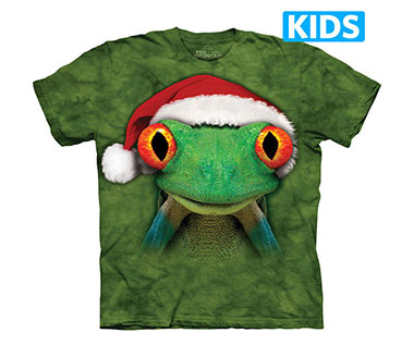 The Mountain - Froggie Elf Kids