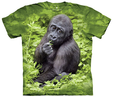 The Mountain - Kojo Western Lowland Gorilla